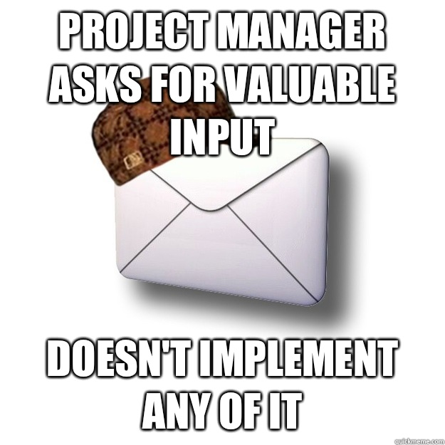 Project Manager asks for valuable input - does not implement any of it